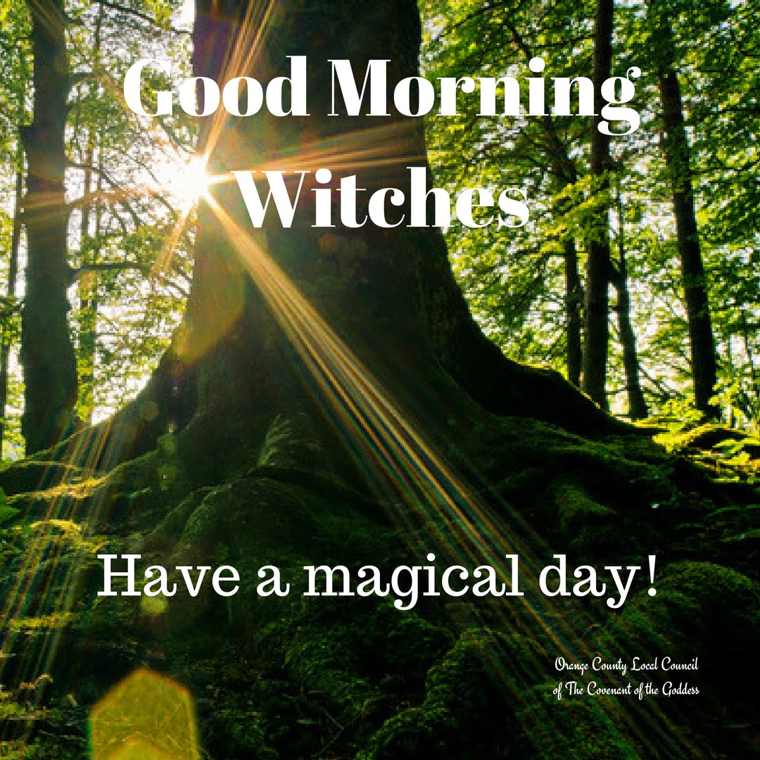 Good Morning Witches